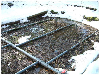 Winter Reed-Beds checked by Cress Water Solutions Ltd